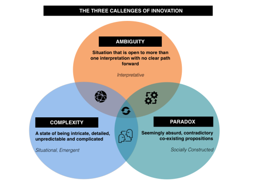 ambiguity paradox and complexity